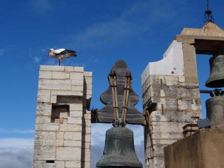 Auch auf dem Turm der Kathedrale.