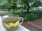 Grüner Tee bei Meditationsmusik aus den Park-Lautsprechern ...