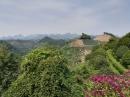 Blick über die Teeplantage.