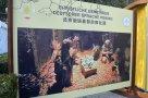 Wohltuende Abwechslung: der Weihnachtsmarkt der Botschaft in Peking am 1. Dezemberwochenende!