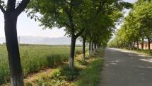 Hier macht Radfahren Freude.