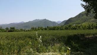 Der Rand des Qinling-Gebirges.