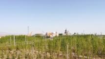 In Jiayuguan