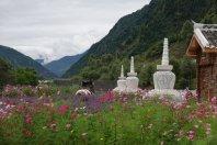 Sichuan-Gansu-Grasland ... 1 (FILEminimizer)