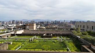 Bei meiner Rückkehr nach Xi'an wurde ich doch glatt mit sauberer Luft empfangen - wie schön!